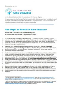 "The ""Right to Health"" in Rare Diseases"
